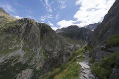 Trift rzeczna dolina, Szwajcaria Obrazy Stock