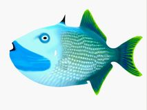 Triggerfish bleu de mâchoire photographie stock libre de droits