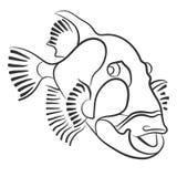 Triggerfish de titan dessiné avec un crayon, viridescens de Balistoides Images stock