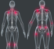 Triggerpoints. A stylized 3D visualization of triggerpoints of a female body Stock Photography