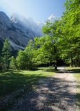 Triglav National Park Royalty Free Stock Photography