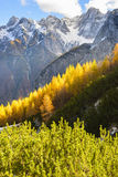 Triglav national park, Slovenia Royalty Free Stock Images