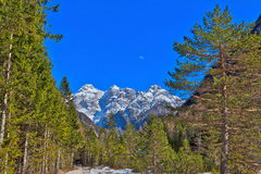 In the Triglav National Park in Slovenia, Eastern Europ. E, with clear bright ice-blue glacial rivers and the mighty mountain chains of the Julian Alpes and the stock photo