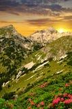 Triglav National Park at sunset Royalty Free Stock Photo