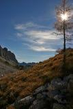 Triglav NP jesieni modrzewie Dolina Triglavskih Jezer Fotografia Stock