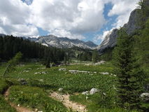 Triglav See-Tal (Dolina Triglavskih-jezer) stockbilder