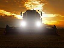 Trigo abandonado de la cosecha de la cosechadora en el medio de un campo de granja Campo de trigo amarillo de la mañana en el cie Imagenes de archivo