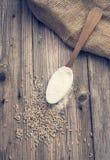 Trigo branco em uma colher e em sementes Imagens de Stock Royalty Free