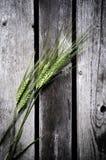 Trigo contra fondo de madera Foto de archivo libre de regalías