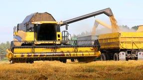 Trigo da colheita mecanizada Imagem de Stock Royalty Free