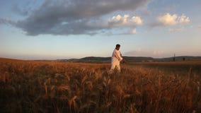 Trigo de colheita do camponês com uma foice filme