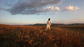 Trigo de cosecha del campesino con una guadaña metrajes