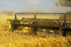 Trigo de la cosecha mecanizada de la máquina segador Fotos de archivo libres de regalías