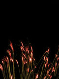 Trigo de la luz Fotografía de archivo libre de regalías