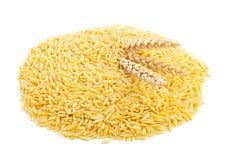 Trigo de trigo duro crudo con los oídos del trigo Imagenes de archivo