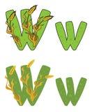Trigo de W da letra Fotografia de Stock