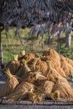 Trigo dourado Foto de Stock