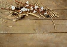 Trigo e algodão em um fundo de madeira Fotografia de Stock Royalty Free
