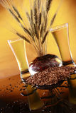 Trigo e cevada frescos altos da cerveja Fotografia de Stock Royalty Free