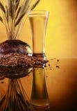 Trigo e cevada frescos altos da cerveja Imagem de Stock