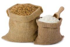 Trigo e farinha Foto de Stock Royalty Free
