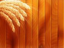 Trigo en fondo de madera del otoño EPS 10 Imagenes de archivo