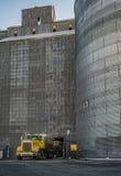 Trigo, fresco do campo ao elevador de grão Imagem de Stock