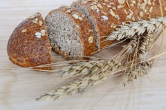 Trigo integral bread Foto de archivo