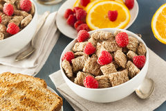 Trigo inteiro saudável cereal Shredded Fotografia de Stock