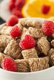 Trigo inteiro saudável cereal Shredded Foto de Stock