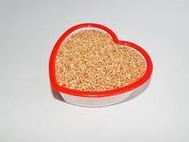 Trigo mourisco do fundo, trigo mourisco, grão do trigo mourisco Imagens de Stock
