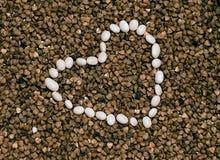 Trigo mourisco e feijões brancos Foto de Stock Royalty Free