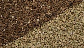 Trigo mourisco fresco natural e trigo mourisco verde como o fundo foto de stock
