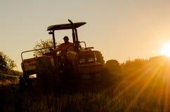 Trigo que planta, agricultura, homem do campo fotografia de stock royalty free
