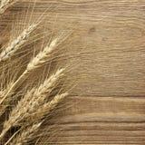 Trigo secado no fundo de madeira Fotografia de Stock