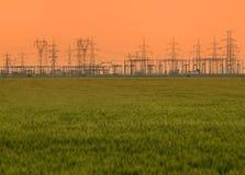 Trigo y líneas eléctricas Imagen de archivo