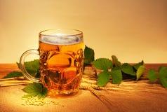 Trigo y salto de la cerveza Imagen de archivo libre de regalías