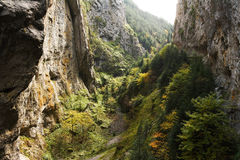 Trigrad gorge bottom Royalty Free Stock Image
