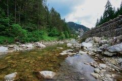 Trigradska-Fluss in Bulgarien Stockbilder