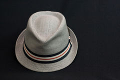 Trilby. Stock Images