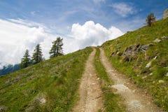 Trilha alpina Imagem de Stock Royalty Free