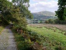 A trilha através das árvores com irmãos molha à direita Imagens de Stock Royalty Free