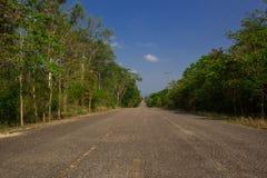 Trilha da estrada Imagens de Stock
