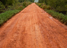Trilha da estrada de terra Foto de Stock