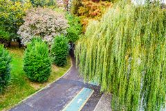 Trilha de ciclismo no parque foto de stock royalty free