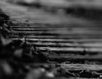 Trilha de estrada de ferro Imagens de Stock Royalty Free