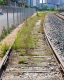 Trilha de estrada de ferro não utilizada coberta com as ervas daninhas e o encurvamento Imagens de Stock