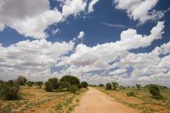 Trilha de sujeira vermelha da terra, parque nacional de Tsavo, Kenya Foto de Stock