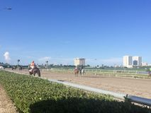 Trilha do cavalo de raça Foto de Stock Royalty Free