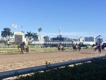 Trilha do cavalo de raça Imagens de Stock
